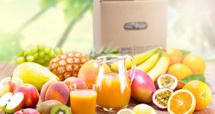 کنسانتره میوه ها
