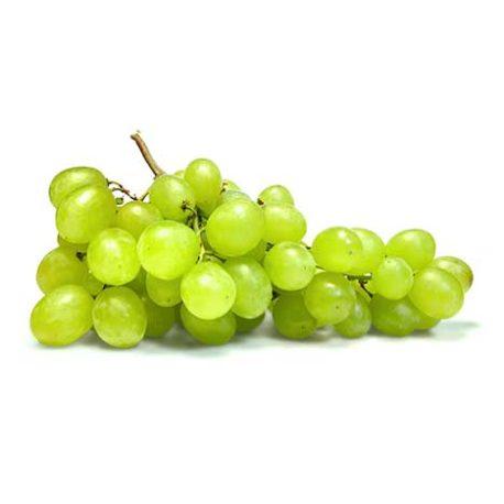 کنسانتره انگور سفید
