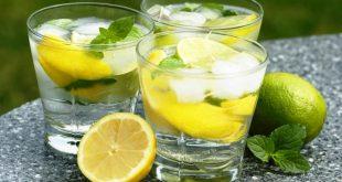 واردات کنسانتره لیمو