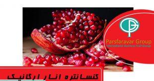 فروش کنسانتره انار شیراز
