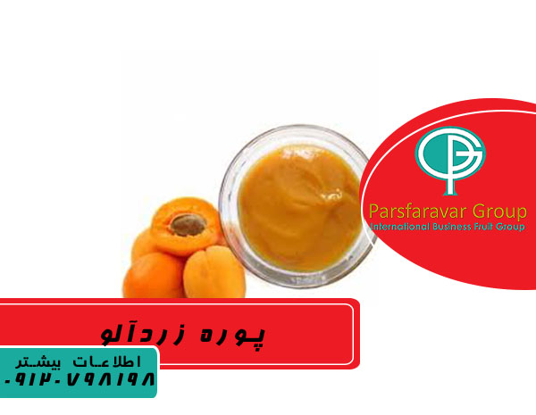 صادرات پوره میوه