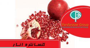 پوره میوه صنعتی